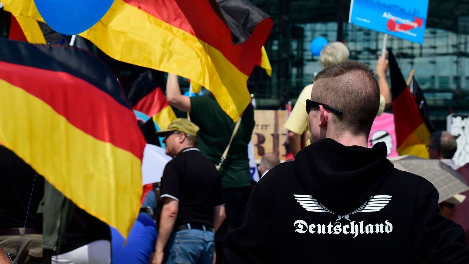 Skynews-afd-protest-germany_4449481-